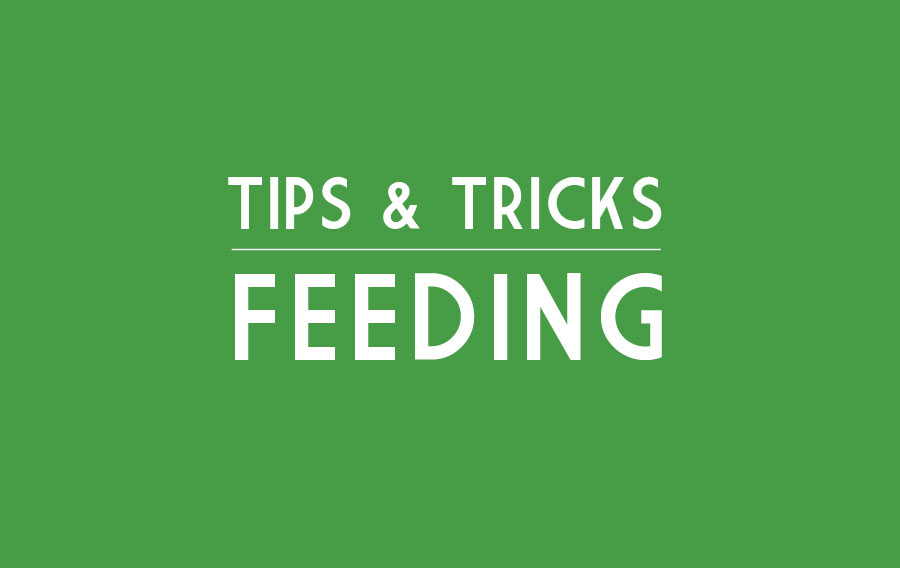TipsTricks-Feeding